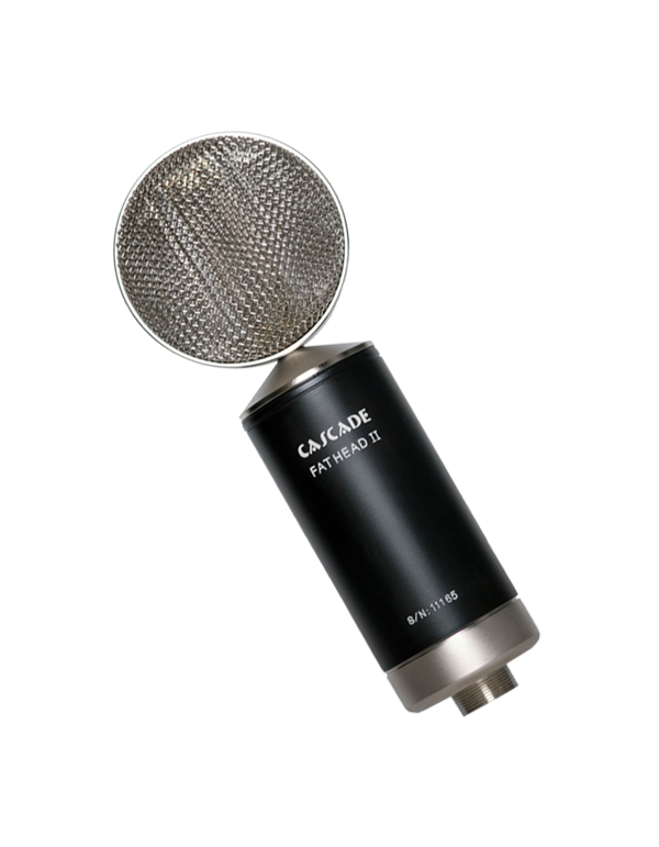 Fat Head II Active/Passive Short Ribbon Microphone Product Photo