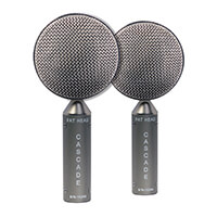 Ribbon Microphone Fat Head BE Stereo Pair Product Photo Thumb 1