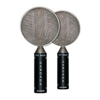 Ribbon Microphone Fat Head Stereo Pair Product Image Thumb 1